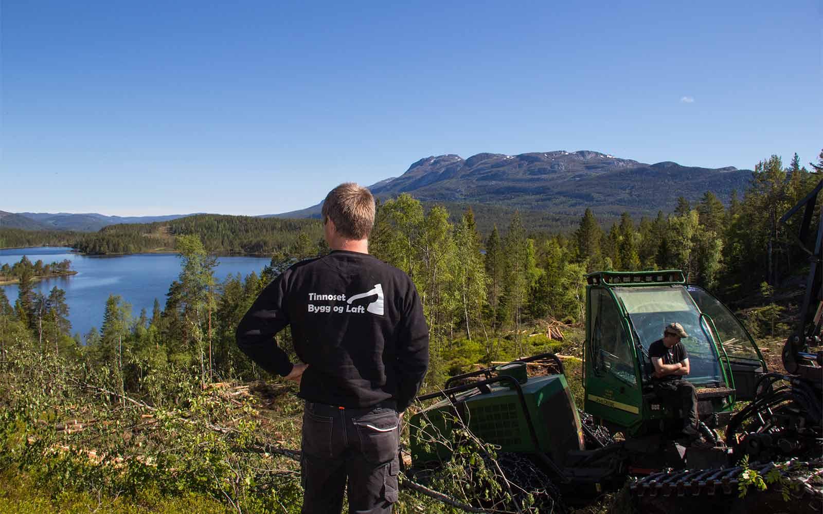 Tinnoset Sag Tinnoset Bygg og Laft Unik Beliggenhet Skogdistrikt Telemark